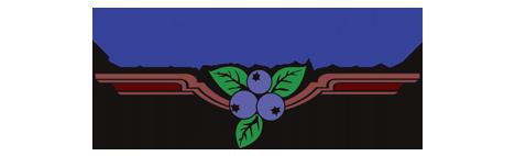 Town of Hammonton Logo